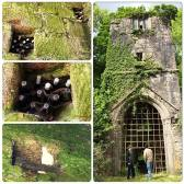 Mysterious wine stored in a 600 year old tower in Lanivet, Cornwall. The hole holding the bottles is just below the 1st level window in the wall. The tower stands on land of St. Benets abbey; the new owner says the bottles have been there for about 30-40 years and nobody really knows who put them up there. Three white doves are guarding them. Maybe even a tower ghost?