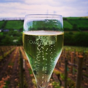 The start of a truly enjoyable evening at the Camel Valley Vineyard