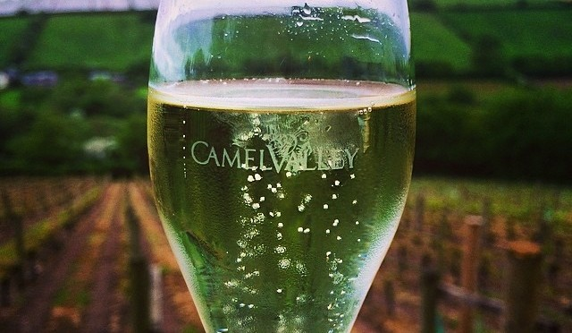 Visit to Camel Valley Vineyard in Cornwall