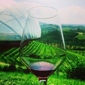 Thick legs of Ceretto Bricco Rocce 2009 single vineyard Barolo