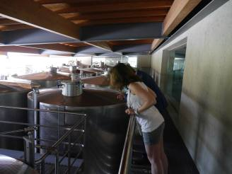 Taking a close look at the stainless steel tanks - this time from above