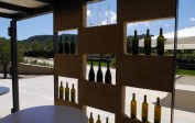 Beautifully designed Surrau winery