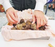 Luca the owner is trying to temp us for black truffles