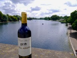 Enjoying the view of the Serpentine in Hyde Park