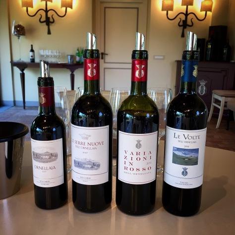 Ornellaia wine tasting