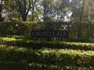 Ornellaia sign at entrance