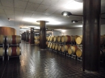 Ca'Marcanda cellar